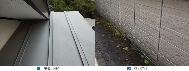 屋根の褪色・藻やこけ