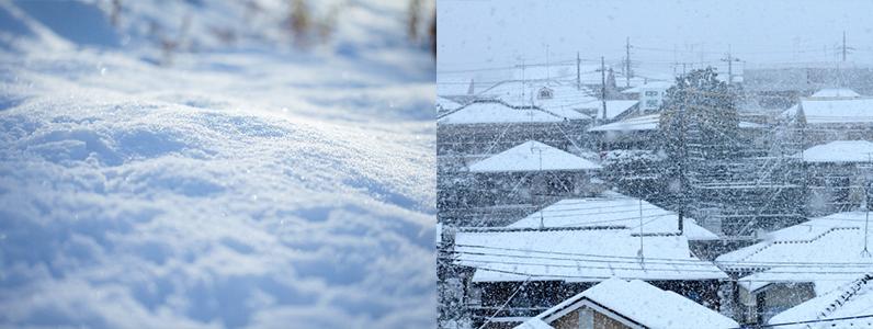 改めて感じる雪の重み