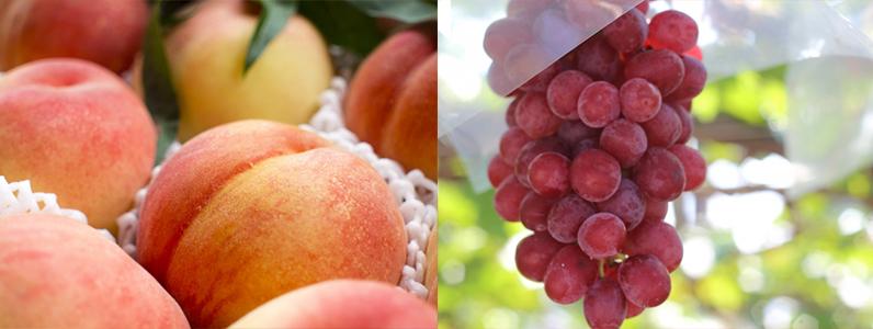 夏バテ対策に初夏のフルーツ