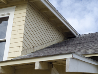 屋根に藻やコケなどは見られませんか?