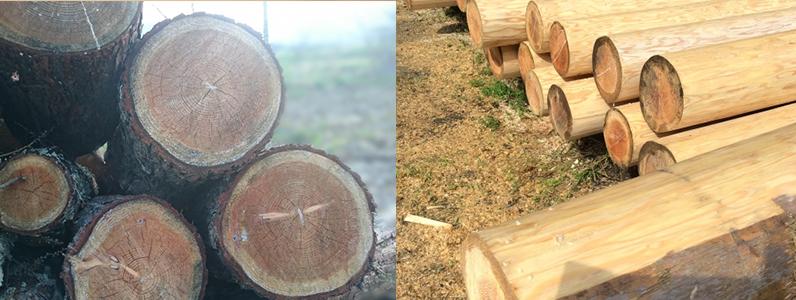 木材しかなかった時代、それぞれの木の特性を理解して適材適所を見きわめながら、木材を組み立てきました。