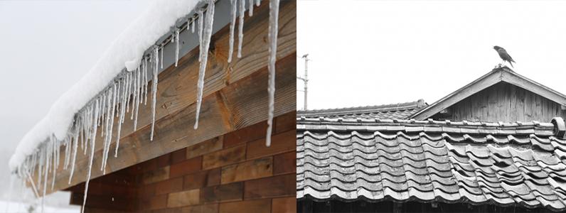 屋根材が破損する理由