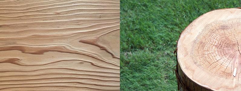 切り方によってそれぞれ違った表情を見せるのも木材の魅力ではないでしょうか?