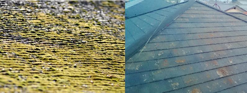 屋根材が破損する理由3