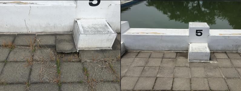 滑り防止加工、プールイラスト塗装なども行っています。