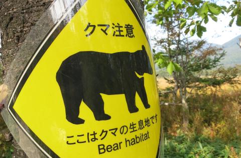 長野市にも野生動物が多くみられますtop