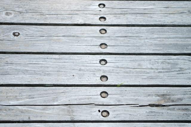 灰色になった木材、見たことはありませんか?