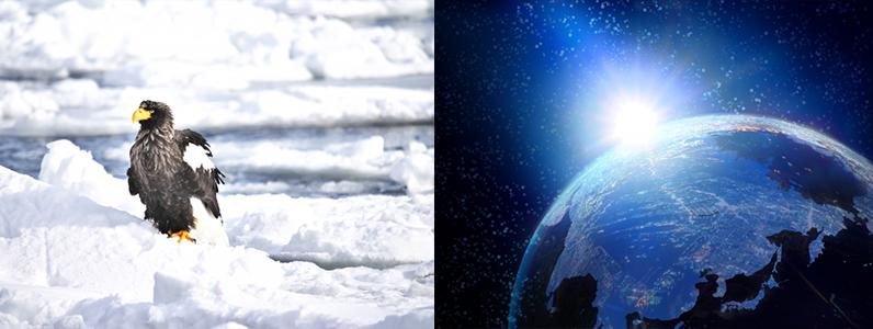宇宙と北極
