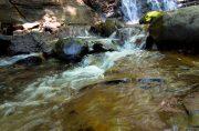 長野の魅力たっぷりな自然溢れる夏場の観光スポット『梓川』『大正池』