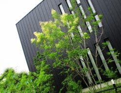 家に表情をもたらす外壁材のバリエーション1