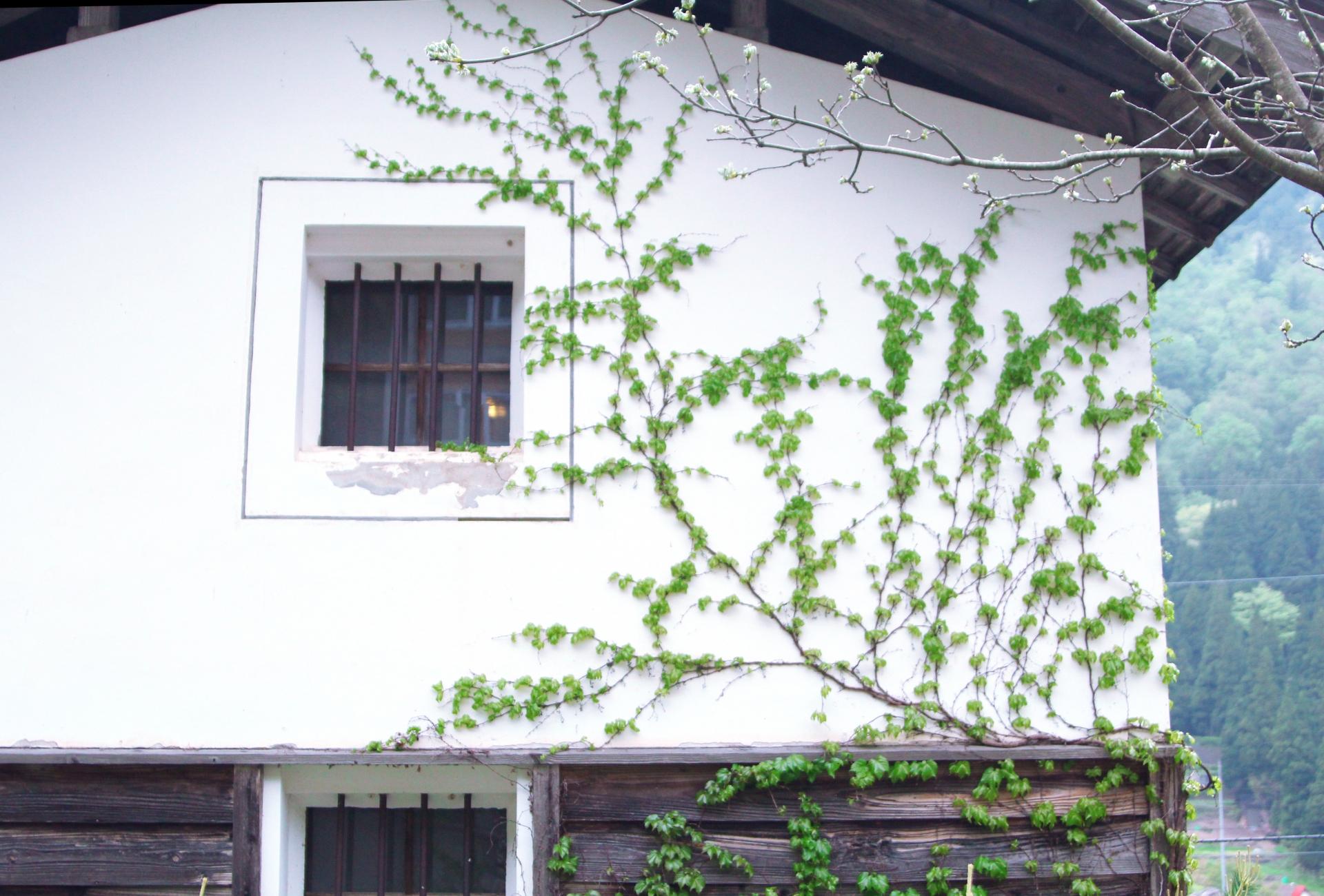 蔵の街 須坂市
