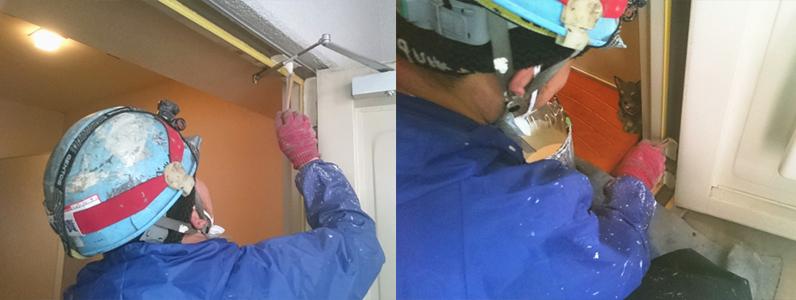 外壁・屋根塗装に失敗しないために~虎の巻き①/なぜ塗り替えが必要か!?塗り替え時期は?建材の損傷はどう直す?~1