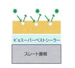 防藻・防カビ性